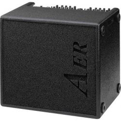 AER Domino 2A Akustik Enstrüman Amfisi