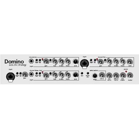 AER Domino 2A Akustik Enstrüman Amfisi<br>Fotoğraf: 3/3