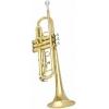 Antigua Vosi TR2561LQ Sib Trompet<br>Fotoğraf: 2/3