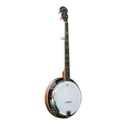Ashton BNJ50 5 Telli Banjo