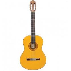 Ashton CG80NT Klasik Gitar
