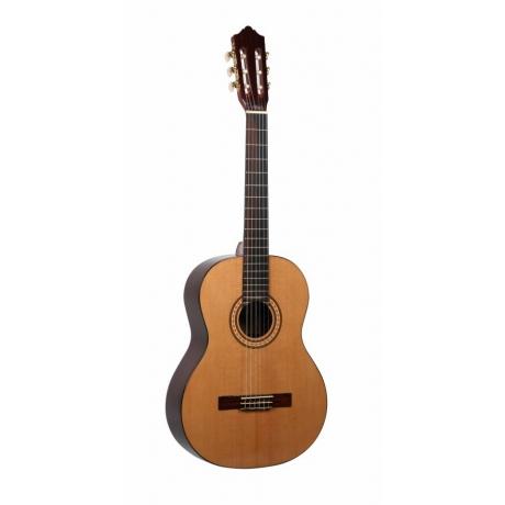 Ashton CG90NT Klasik Gitar<br>Fotoğraf: 1/1