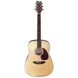 Ashton D35NT Akustik Gitar