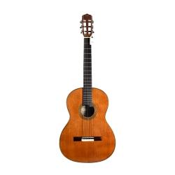 Cordoba Fusion Orchestra Cd/in Klasik Gitar (Natural)