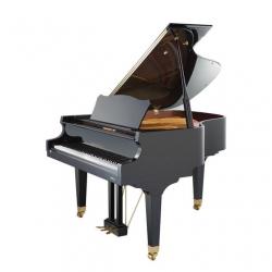 Eduard Seiler Model 168 Akustik Kuyruklu Piyano (Parlak Siyah)