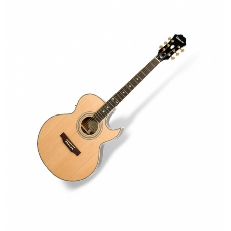 Epiphone PR5-E Elektro Akustik Gitar<br>Fotoğraf: 2/4