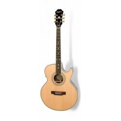 Epiphone PR5-E Elektro Akustik Gitar