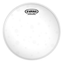Evans TT08HG 8 Inch Tom Derisi