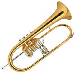 Jinbao JBFH-1150L Flugelhorn Trompet