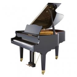 Johannes Seiler Model 160 Traditio Akustik Kuyruklu Piyano (Siyah)