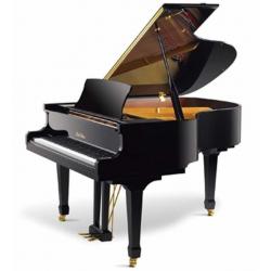 Pearl River GP160 Akustik Kuyruklu Piyano (Parlak Siyah)