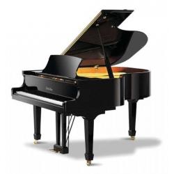Pearl River GP170 Akustik Kuyruklu Piyano (Parlak Siyah)