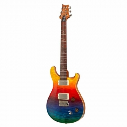 PRS Al Di Meola Signature 10 Top Pattern Regular Elektro Gitar