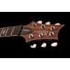 PRS SE Custom 24 Elektro Gitar (Zebrawood)<br>Fotoğraf: 5/5