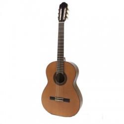 Raimundo Model 660 Elektro Klasik Gitar