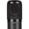 Se Electronics SE2300 Geniş Diyaframlı Multi Patern  Kondenser Mikrofon<br>Fotoğraf: 3/4