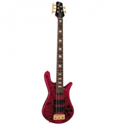 Spector NS-5XL Bas Gitar