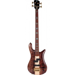 Spector NS2 Bas Gitar