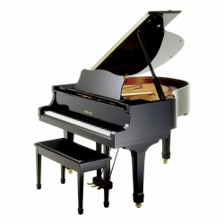 Yamaha C1X Akustik Kuyruklu Piyano (Parlak Siyah)