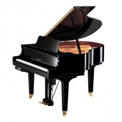 Yamaha DGB1KE3 Disklavier Akustik Kuyruklu Piyano