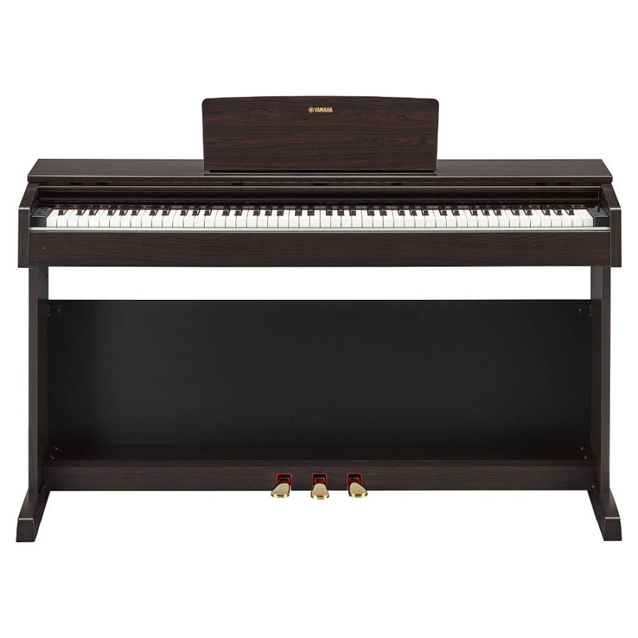 yamaha ydp143r dijital piyano g la ac doremusic. Black Bedroom Furniture Sets. Home Design Ideas