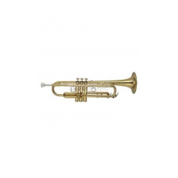 YAMAHA YTR8310Z Sib Trompet